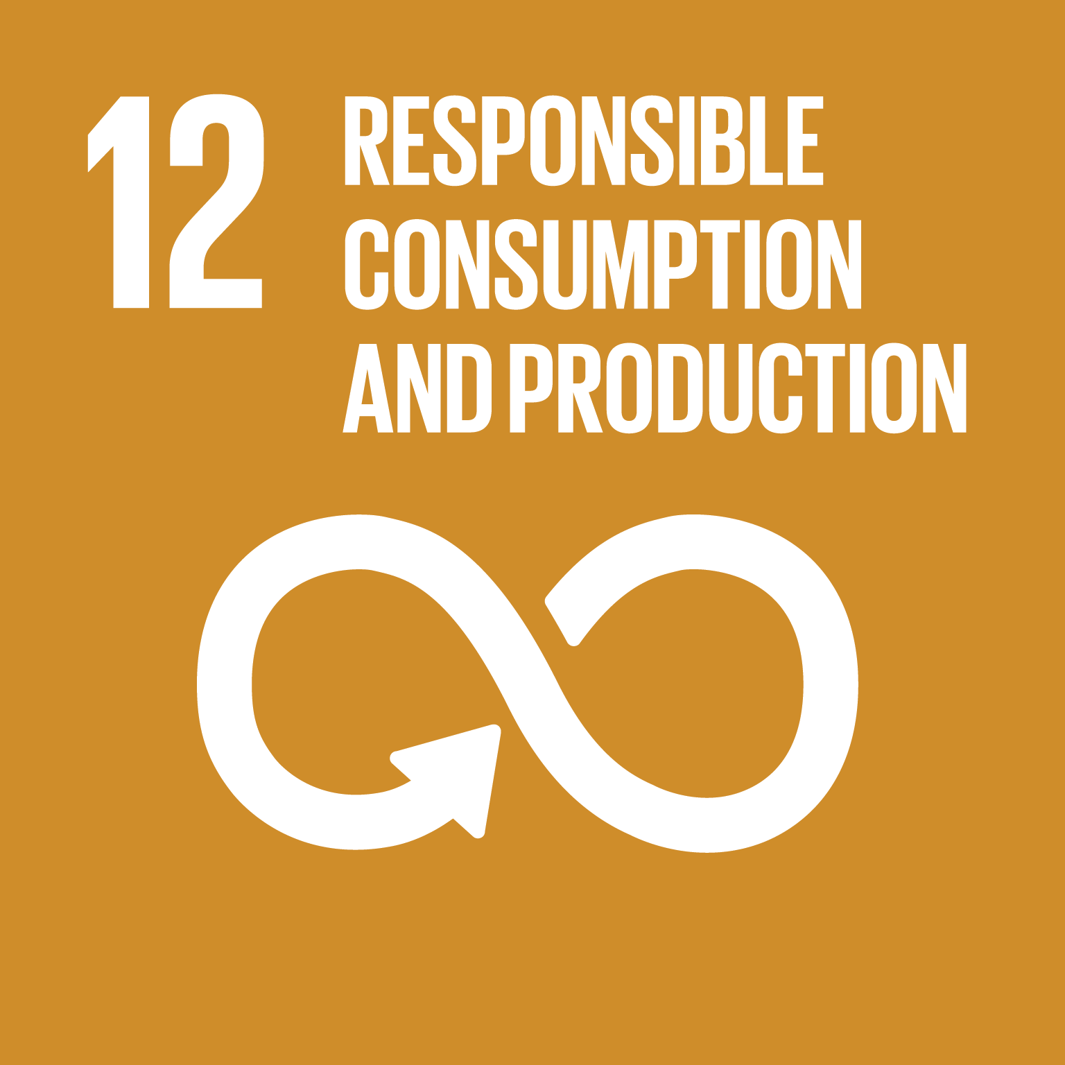 SDG 12: Responsible Production and Consumption